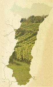 alsace-vins