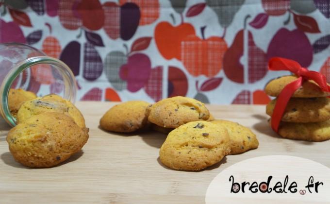 Biscuits Potimarron Chocolat