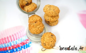 Biscuits Flocons d'Avoine Chocolat